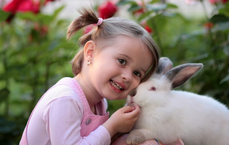 Young girl snuggling with a rabbit